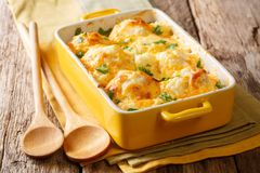 Casserole from cauliflower with bechamel sauce close-up in a baking dish. horizontal. Casserole from cauliflower with bechamel sauce close-up in a baking dish on stock photo