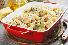 Casserole with cauliflower and chicken Royalty Free Stock Photo