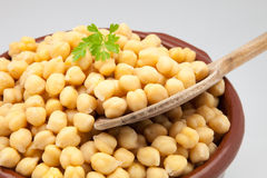 Casserole of chick-peas Stock Image