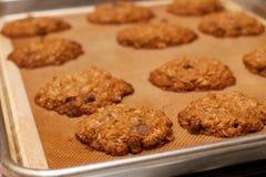 Casserole de chocolat cuit au four frais Chip Cookie Row de farine d'avoine image stock