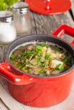 Casserole de potage aux légumes avec des lentilles, plan rapproché, vertical Images libres de droits