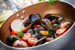 Casserole with mollusk Royalty Free Stock Photo