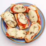 Casserole with mozzarella, tomato and basil on colored plate Royalty Free Stock Photos