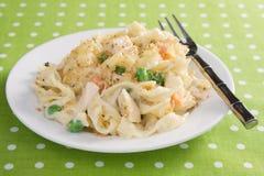 casserole noodle κοτόπουλου Στοκ εικόνα με δικαίωμα ελεύθερης χρήσης