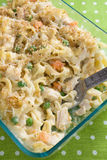 casserole noodle κοτόπουλου Στοκ φωτογραφία με δικαίωμα ελεύθερης χρήσης