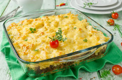 Casserole with pasta and minced meat Royalty Free Stock Photography