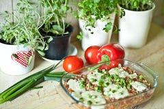 Casserole. Rise mincedmeat paprika mozarella food dinner stock image