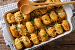Casserole of Tater Tots with cheese and herbs close up in a baki Royalty Free Stock Photo
