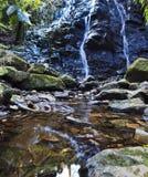 Casserole 300-302 Vert de cascade de la nomenclature Mt Wils Photographie stock