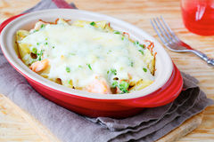 Casserole With Salmon And Pasta Stock Photography