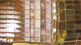 Casseroles historiques de sel vue aérienne à Aveiro, Portugal banque de vidéos