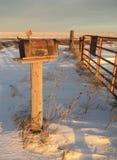 Cassetta delle lettere arrugginita rurale di Colorado Fotografia Stock Libera da Diritti