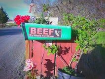 Cassetta delle lettere dei proprietari di ranch Fotografia Stock