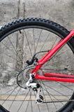 Cassetta posteriore della bici sulla ruota con la catena Fotografia Stock Libera da Diritti