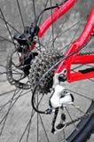 Cassetta posteriore della bici sulla ruota con la catena Fotografie Stock