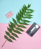 Cassette sonore, cassette vidéo, feuille de fougère sur un fond en pastel coloré Technologies analogues de rétros médias images stock