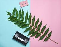 Cassette sonore, cassette vidéo, feuille de fougère sur un fond en pastel coloré Technologies analogues de rétros médias, style b photo stock
