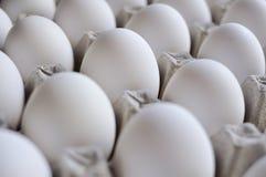 Cassetto delle uova Fotografia Stock
