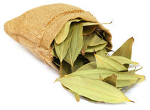 Cassia leaves in sack Stock Image