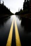 cassiar хайвей влажный Стоковая Фотография RF