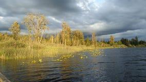 cassidy jeziorny wa Zdjęcie Royalty Free