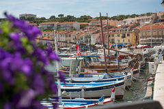Cassis harbour Stock Photography