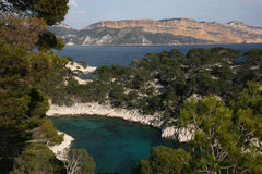 Cassis red cliff Stock Images