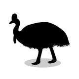 Cassowary bird black silhouette animal Stock Photos