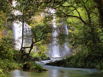 Cassowary Falls Royalty Free Stock Images