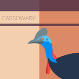Cassowary Flat Postcard Royalty Free Stock Images