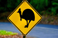 Cassowary warning sign in Queensland Australia. Cassowary warning sign on a road in Daintree National Park in the tropical north of Queensland, Australia stock photo