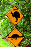 Cassowary warning sign in Queensland Australia Royalty Free Stock Photos