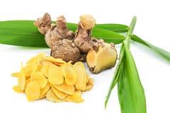 Cassumunar ingefära, en grundläggande ingrediens för thailändsk massageolja Arkivbild