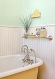 Cast iron bath tub Stock Photography