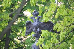 Cast iron double headed imperial eagle of the Transfiguration Cathedral wall among green foliage close up stock images