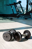 Cast iron dumbbells. On fitness floor Stock Photography