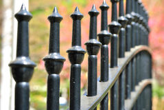 Cast Iron Fence in a Park Stock Image