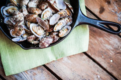 Cast iron skillet of Delicious Fresh Steamer Clams with Garlic a Royalty Free Stock Photo