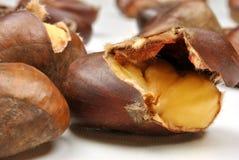 castaña dulce orgánica y fondo blanco Fotos de archivo libres de regalías