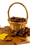 Castañas en cesta Foto de archivo libre de regalías