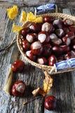 Castañas en cesta de mimbre y hojas de otoño Imagen de archivo