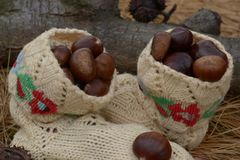 Castañas en pares de calcetines hechos a mano de las lanas Foto de archivo libre de regalías