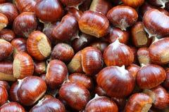 Castañas españolas (castañas dulces) Fotos de archivo