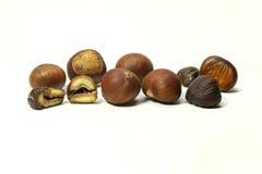 Castañas frescas Foto de archivo libre de regalías