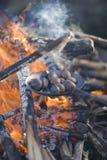 Castañas de la asación en un fuego abierto Fotos de archivo libres de regalías