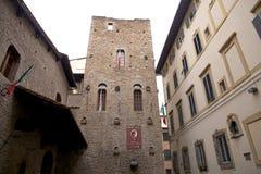 castagna della torre Fotografia Stock