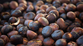 Castagne arrostite Immagine Stock