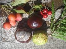 Castagne e bacche rosse selvatiche sul bordo di legno Immagini Stock