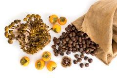 Castagne fresche e canestro dei cachi maturi con i funghi isolati Fotografie Stock Libere da Diritti