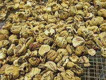 Castagne schiacciate secche per produrre farina Fotografia Stock